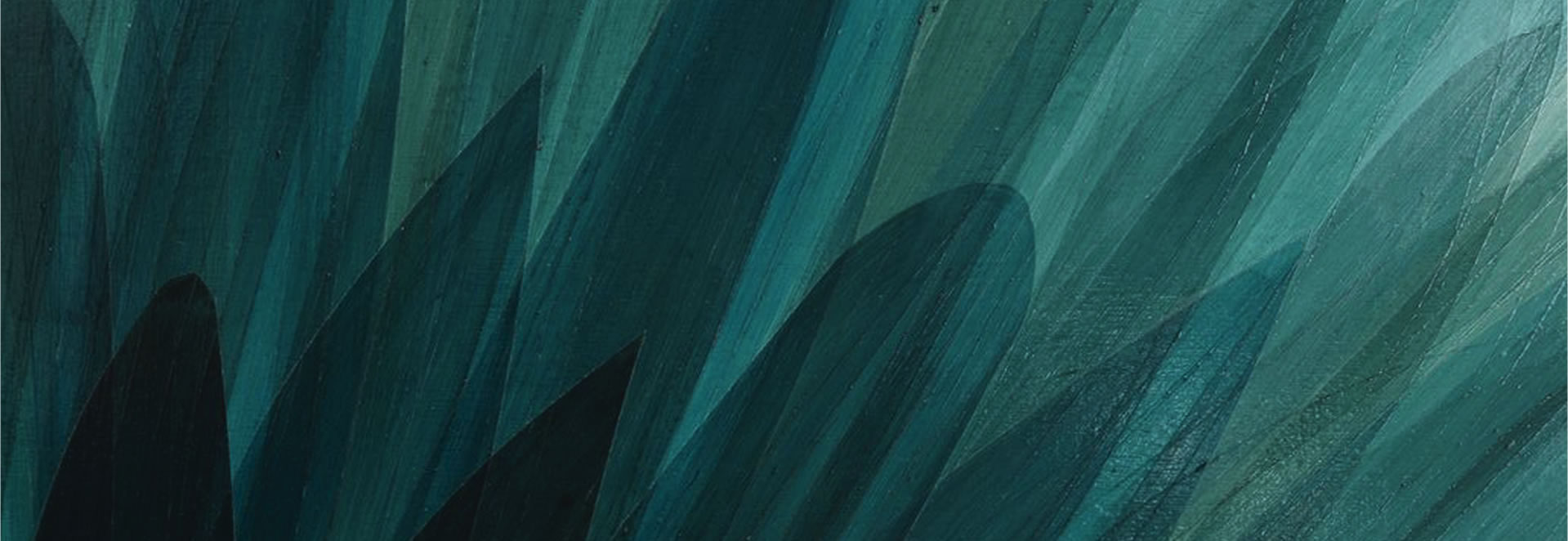 Home Page Blue Feather Banner